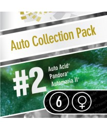 Paradise Seeds Auto Collection pack 2